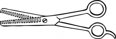 Two Blade Thinning Shears