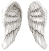 (Feathered Wings PSD