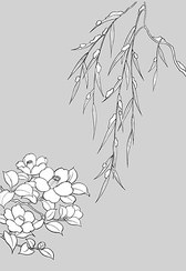 Japanese Line Drawing Of Plant Flowers Vector Graphic -16 (