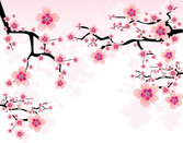 Peach flower background vector-4
