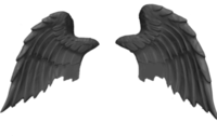 Black Wings PSD