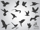 Free Flying Birds Silhouettes