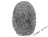 Fingerprint Vector Illustration Free