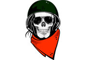 Skull in Military Helmet Free