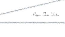 Paper Tear Vector Free