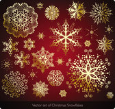 Beautiful snowflake vector template