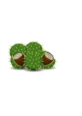 A couple of chestnuts