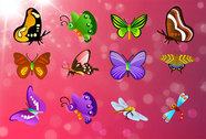 Free Vector Butterfly