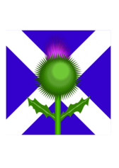 Scottish Thistle and flag