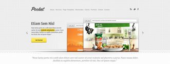 Pocket Free Website PSD Template