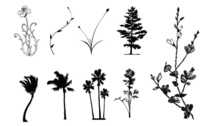Trees, flowers, rattan material vector case