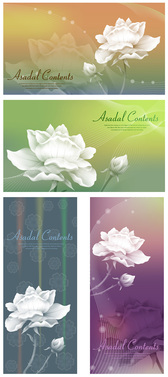 Background Of White Roses With Dream Material