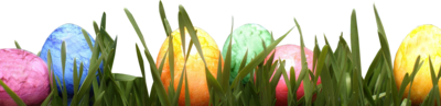 Colorful Eggs In Grass PSD