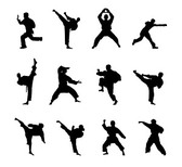 Kung Fu Martial Arts Icon Material Silhouette Figures