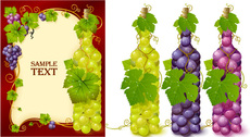 Bottles Filled With Grape