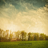 Vintage green natural background