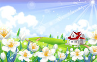Flower Countryside Scenery Of