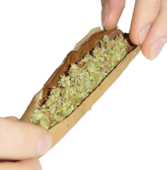 Rolling A Blunt PSD