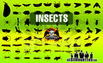 71 Vector Insects