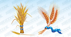 2 vector bundle of wheat material