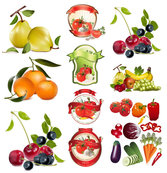Theme Vector Fruits And Vegetables