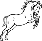 Jumping Horse Outline