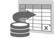 Import to Excel Icon