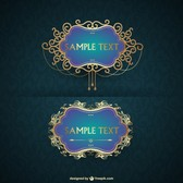 Luxurious vector frame