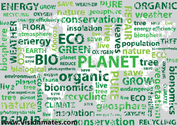 Eco Typography Background