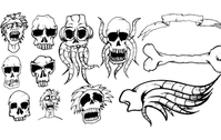 Different types of skulls free