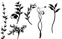 Free Set of Vector Floral Designs
