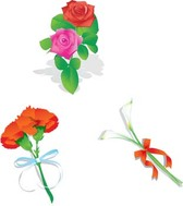 Stalk of roses with ribbon