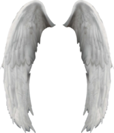 Angel Wings, Ali d'angelo PSD