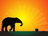 Silhouette Elephant in the Sunset Vector Wallpaper