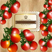 Tomatoes text template design vector001