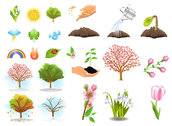 Plant Trees Vector Material Plant