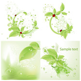 Vector Ladybird Green Leaf Material Drops