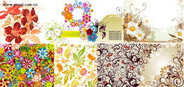 Exquisite Fashion Pattern Vector Graphic Package