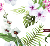 White hibiscus and butterfly orchid Vectors
