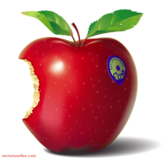 Red Eaten Apple by Ray Craighead