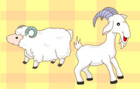 Cartoon Goat Sheep