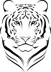 The Tiger Picture 15